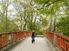 Iron Bridge, Paradise Pond