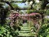 Capen Garden