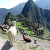 Machu Picchu to the Galapagos